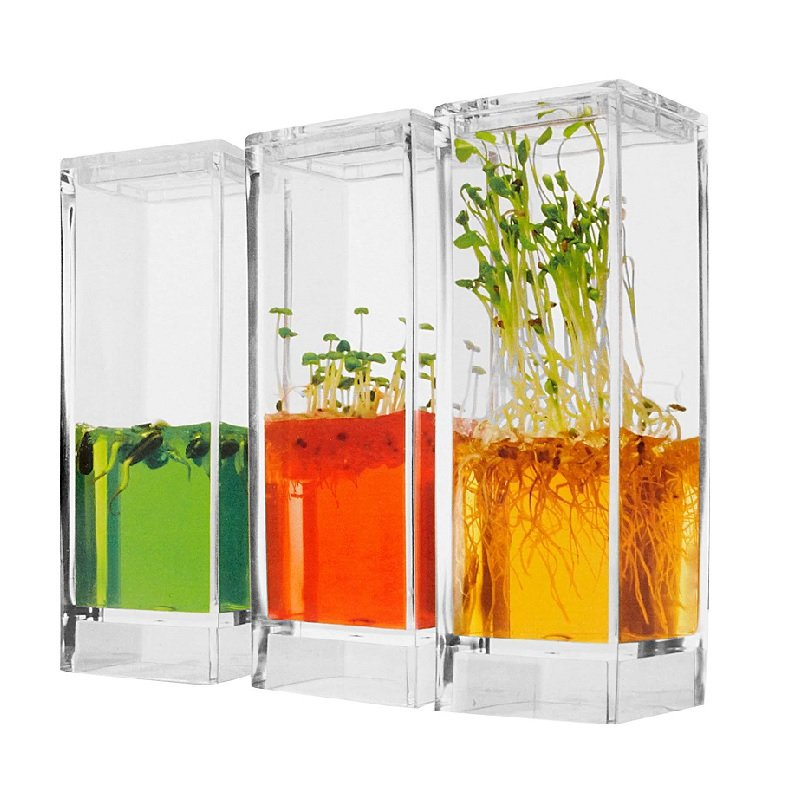 Mini-invernadero que tiene un gel de crecimiento para plantas