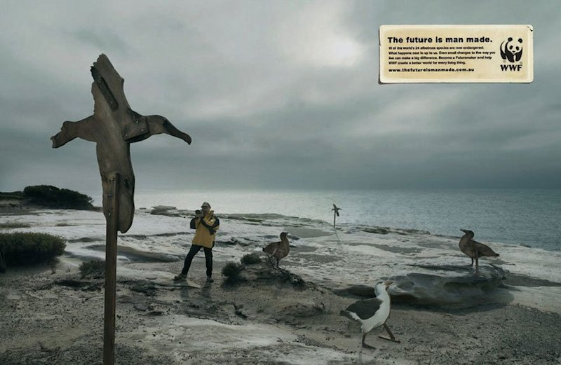 public-social-ads-animals-18