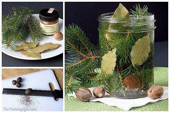 Aromatizante casero dePino, hojas de laurel y nuez moscada