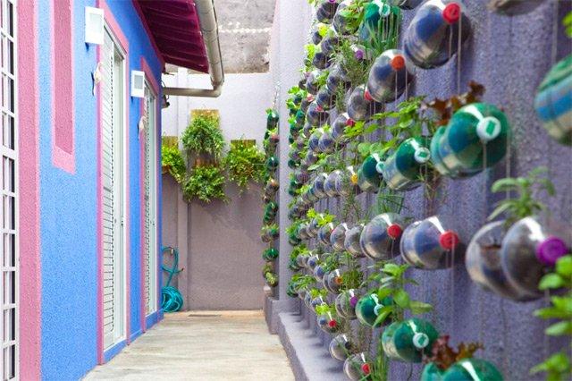 Jardín Vertical reutilizando botellas de plástico3
