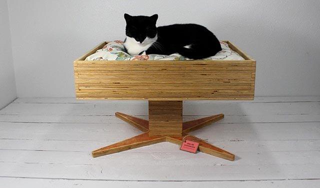 Ideas De Camas Para Gatos Con Objetos Reciclados