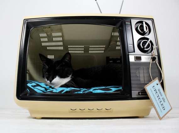 cama para gatos con television