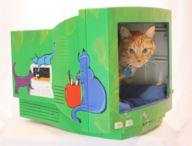 casa-de-gato-monitor