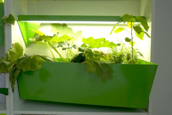 Parasite Farm-11-Fábrica-de-compost