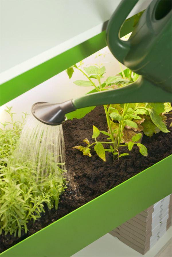 Parasite Farm-9-Fábrica-de-compost-2