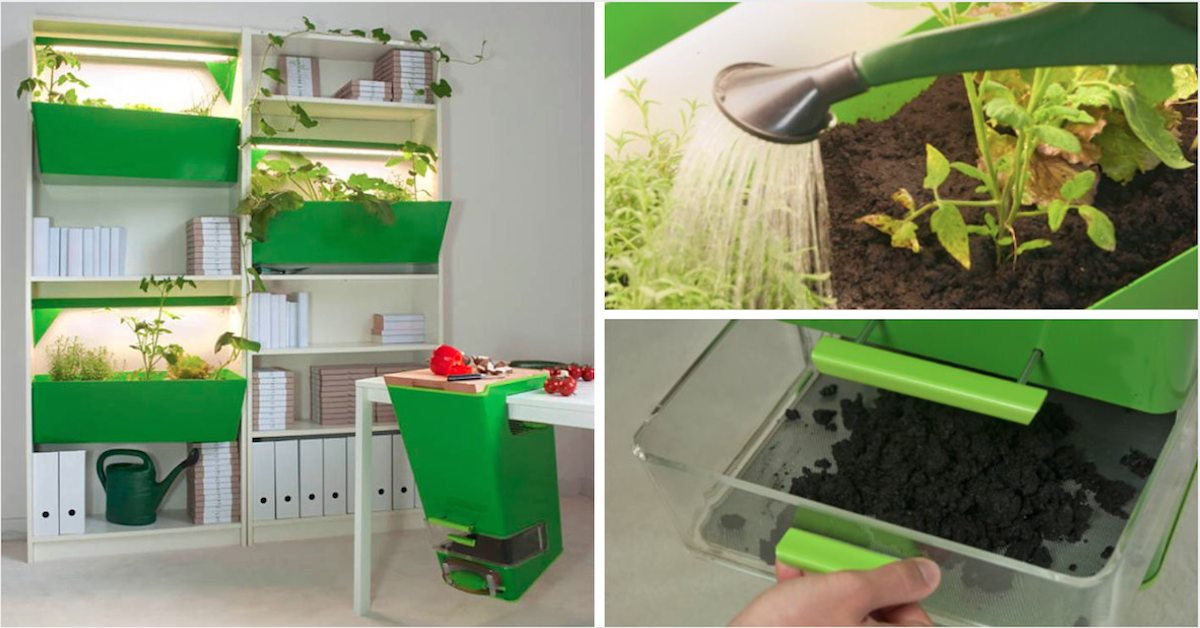 Parasite Farm Granja de compostaje casero