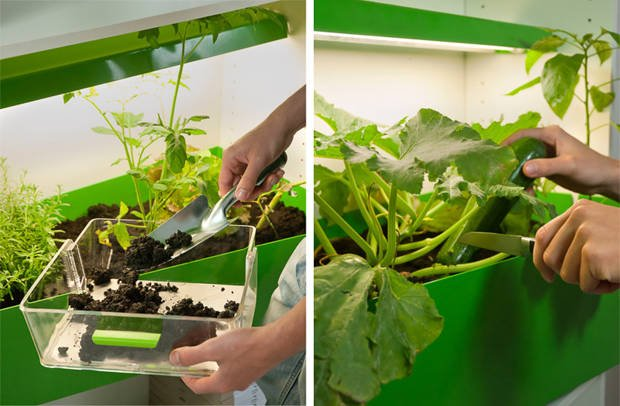 Parasite Farm. Granja de compostaje casero para cultivar tus verduras frescas