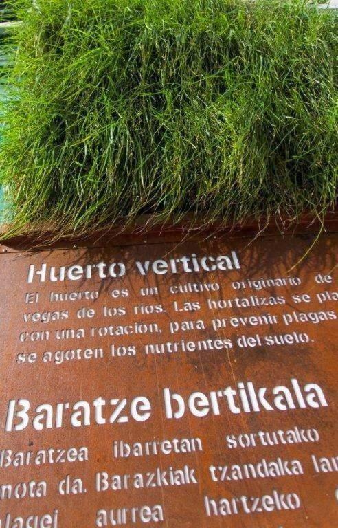 Fachada vegetal Vitoria7
