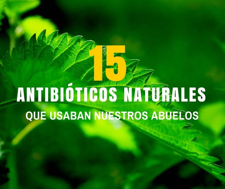 Antibioticos-naturales-1