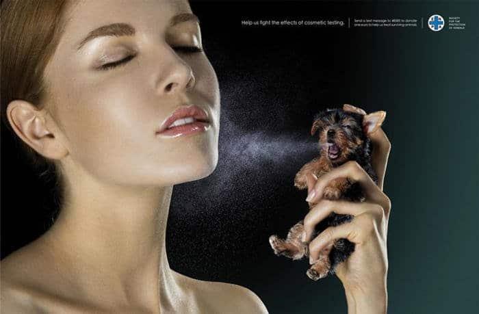 Ayúdenos a combatir los efectos del Testing en cosmética