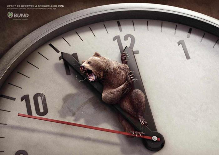 Cada 60 segundos muere una especie2