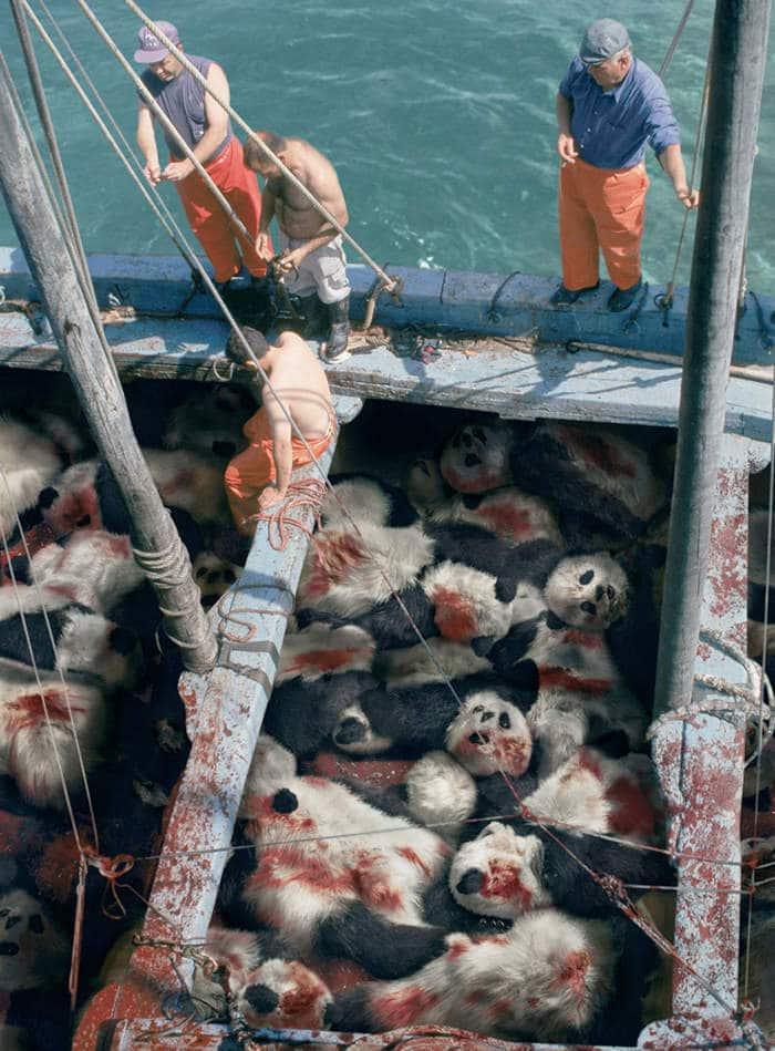Cuando veas un atún, piensa en un panda