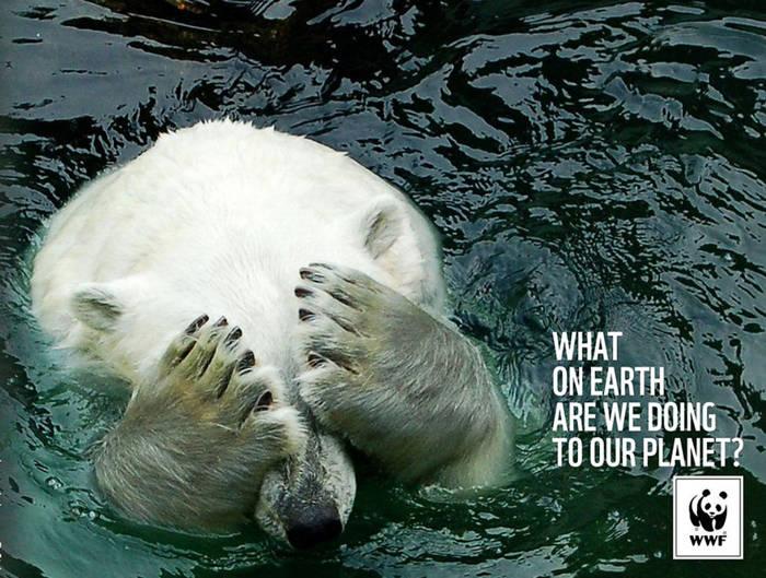 Qué diablos estamos haciendo con nuestro planeta1