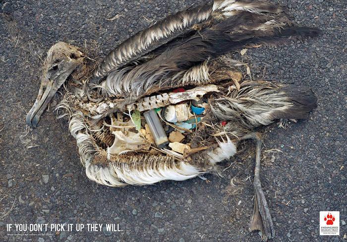 Si no reciclas bien los residuos