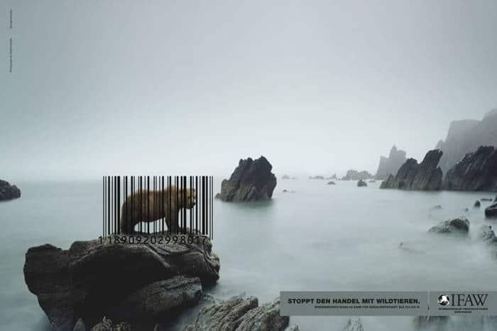 Stop al Comercio de Especies Silvestres