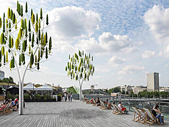 árbol del viento