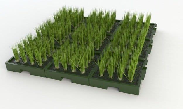 Plant-e gran escala