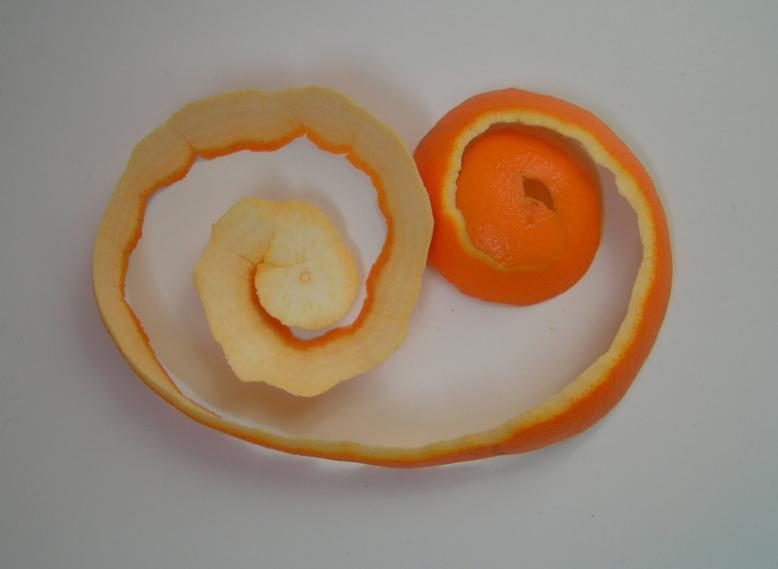 Rosas naranjas2