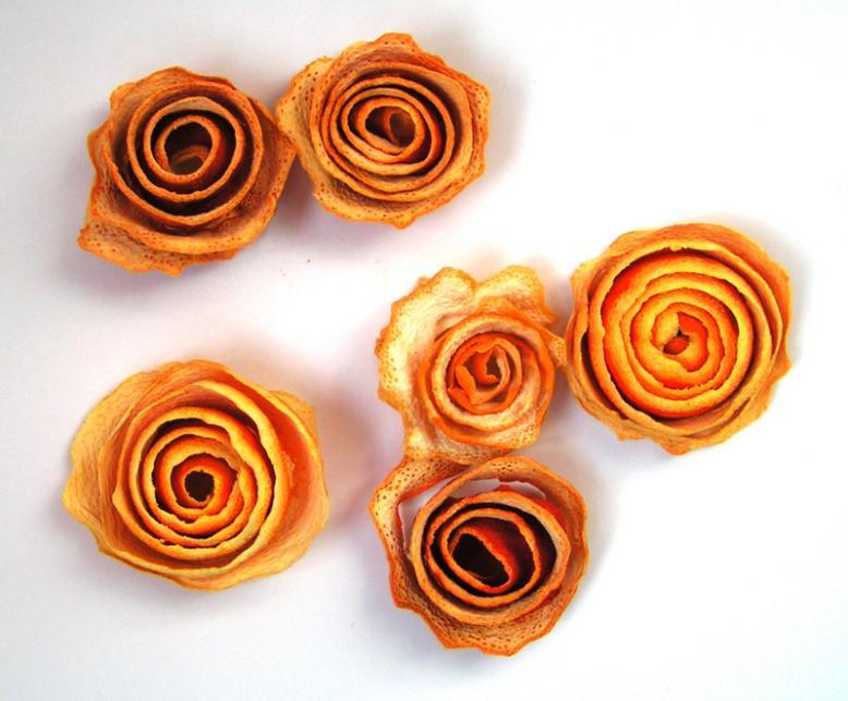 Rosas naranjas5