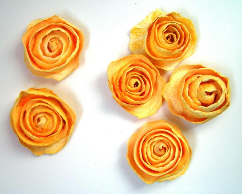 Rosas naranjas6
