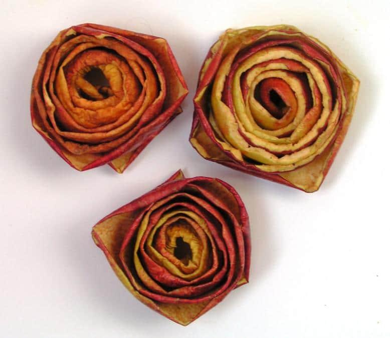 Rosas naranjas7