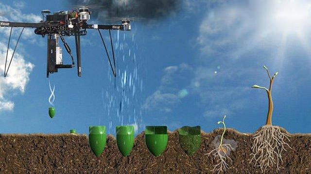 Plantar arboles con drones