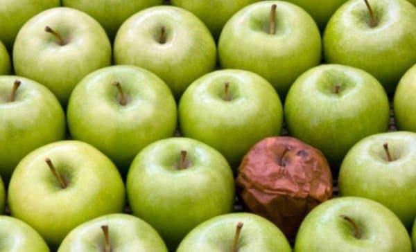 manzana podrida daña al resto