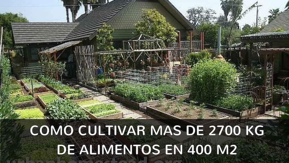 Como-cultivar-mas-de-2700-kg-de-alimentos