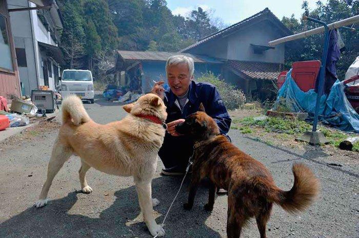 El Hombre que regresó a Fukushima para alimentar a los animales que se abandonaron10