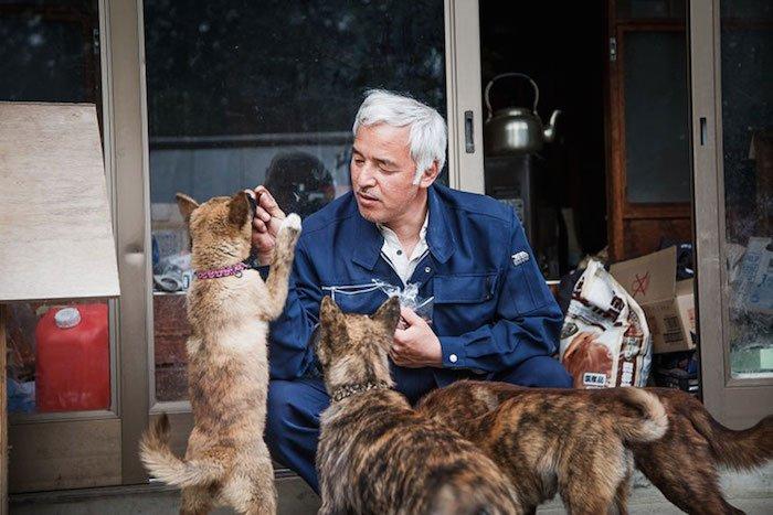 El Hombre que regresó a Fukushima para alimentar a los animales que se abandonaron2