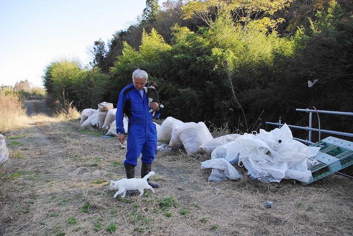 El Hombre que regresó a Fukushima para alimentar a los animales que se abandonaron8