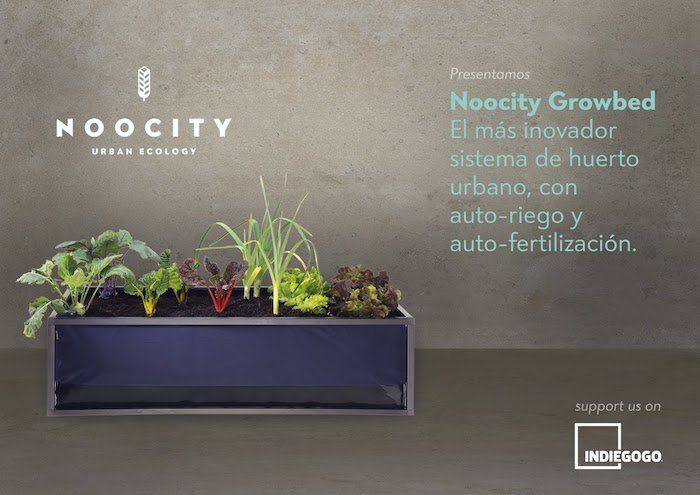 Noocity Urban Ecology