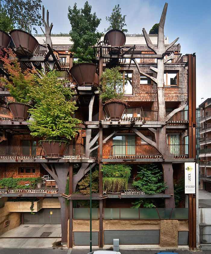 vivir en un bosque vertical1