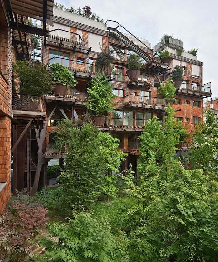 vivir en un bosque vertical4