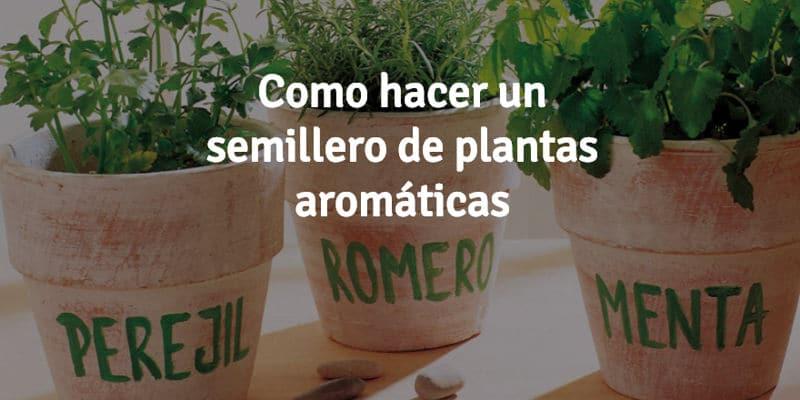 Como-hacer-un-semillero-de-plantas-arom%c3%a1ticas