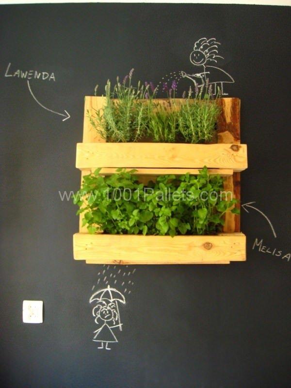 Estante para hierbas frescas
