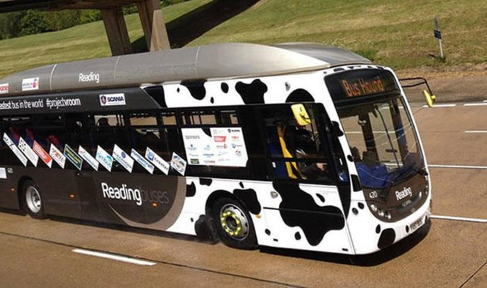 Autobus con heces de vaca linea de reading
