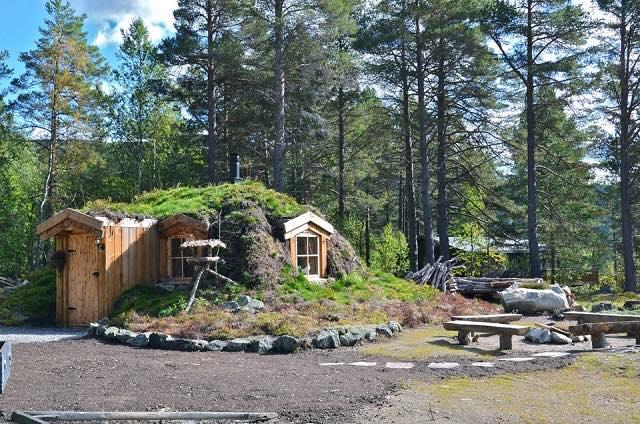 Disfruta de la naturaleza en una casita de un bosque Noruego1