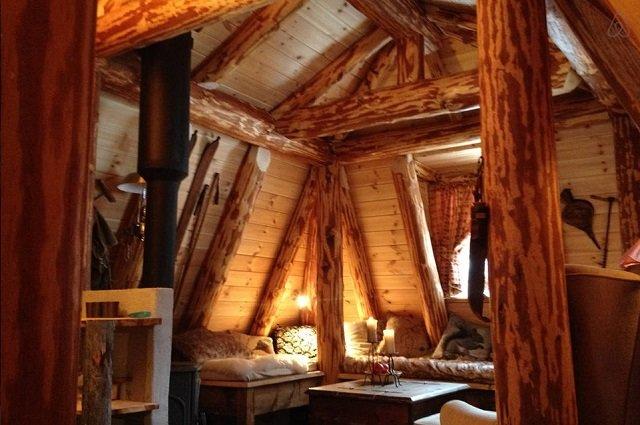 Disfruta de la naturaleza en una casita de un bosque Noruego4