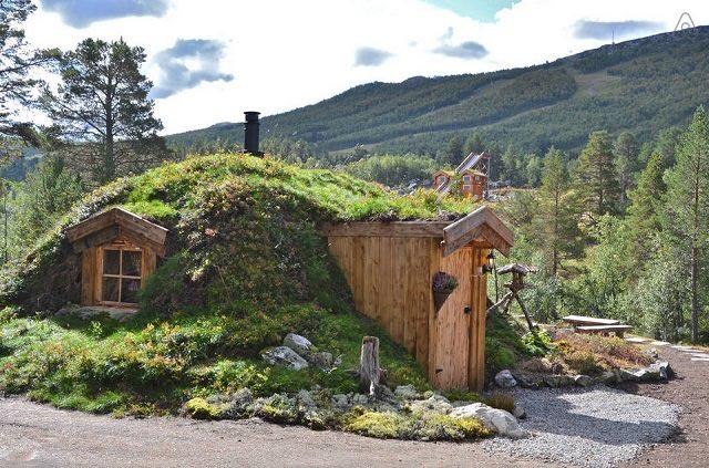 Disfruta de la naturaleza en una casita de un bosque Noruego7