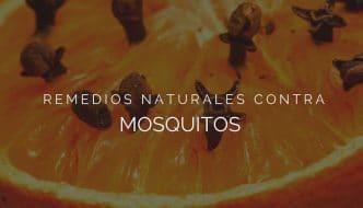 Los remedios caseros más eficaces para repeler a los mosquitos