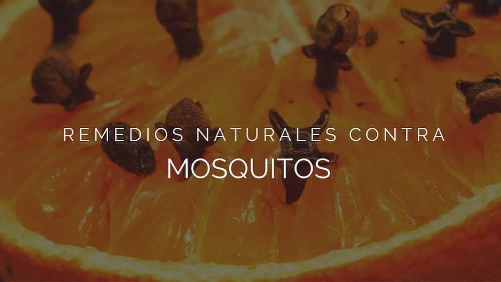 Remedios-naturales-contra-mosquitos
