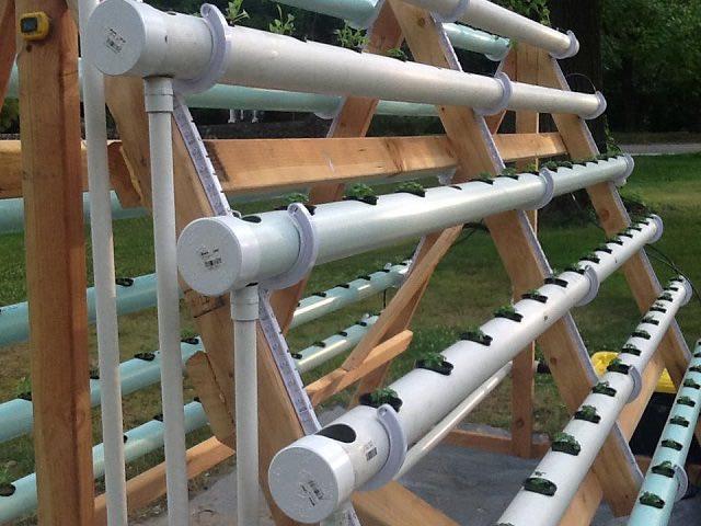 Cómo crear un sistema hidropónico casero 3