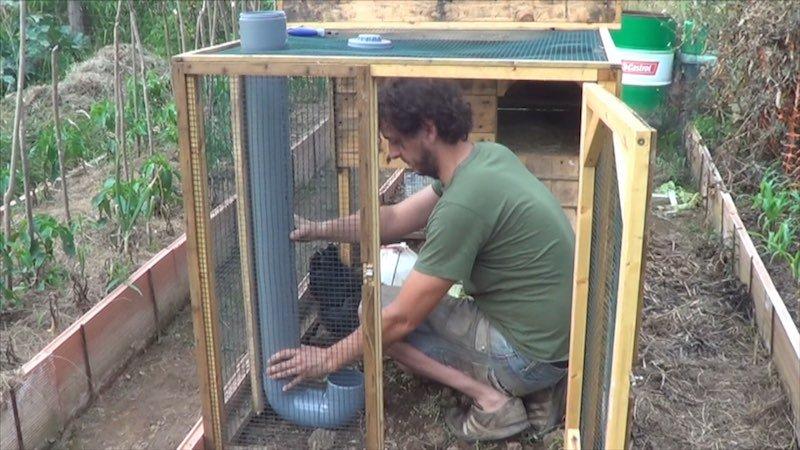 Cómo hacer un comedero casero para las gallinas