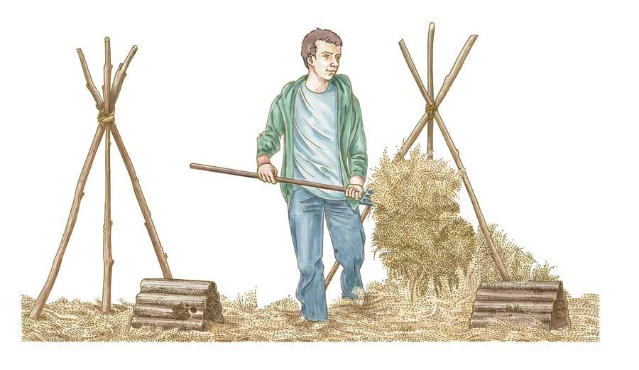 Como hacer una granja autosuficiente en media hectárea 1