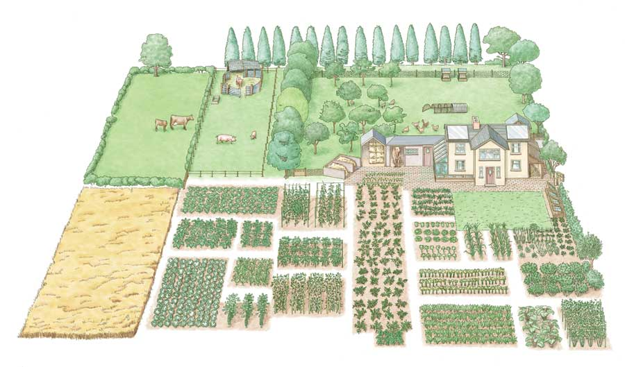 Como-hacer-una-granja-autosuficiente-en-media-hect%c3%a1rea