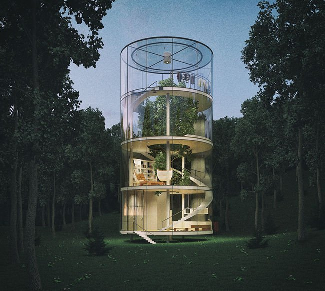 La casa que abraza a un árbol