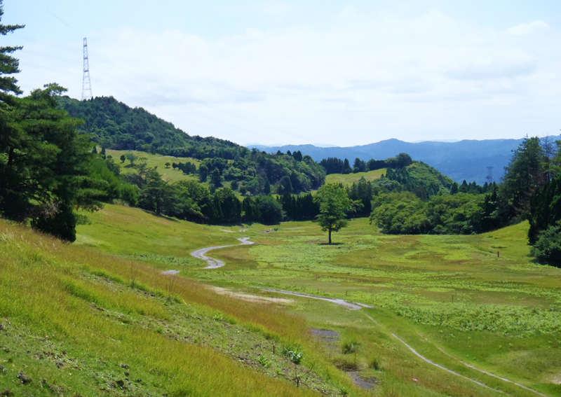 Plantas solares en campos de golf abandonados en Japon