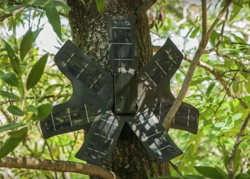 Topher-white-tiene-un-sistema-para-salvar-los-bosques-usando-smartphones-viejos