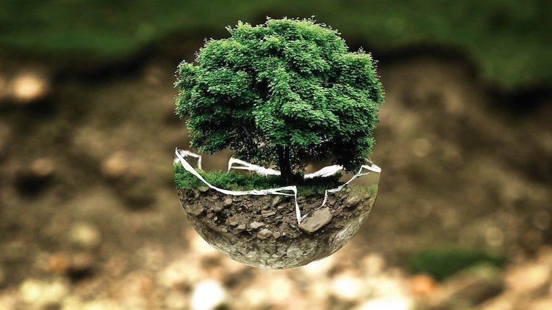 consejos para hacer más consciente del medio ambiente